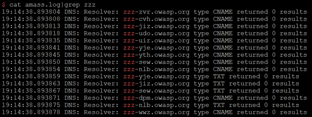 OWASP Amass advanced subdomain discovery with hashcat masks